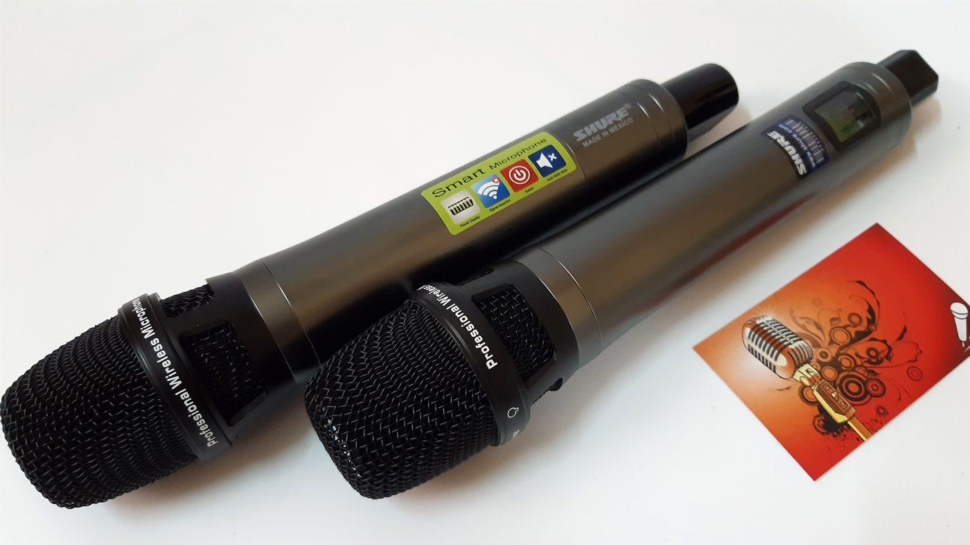 Tay Micro shure Pro 001